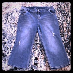 Lane Bryant Distressed Cropped Jeans